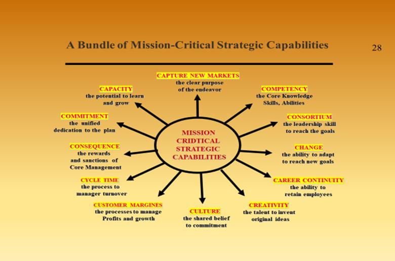 A bundle of mission critical strategic capabilities